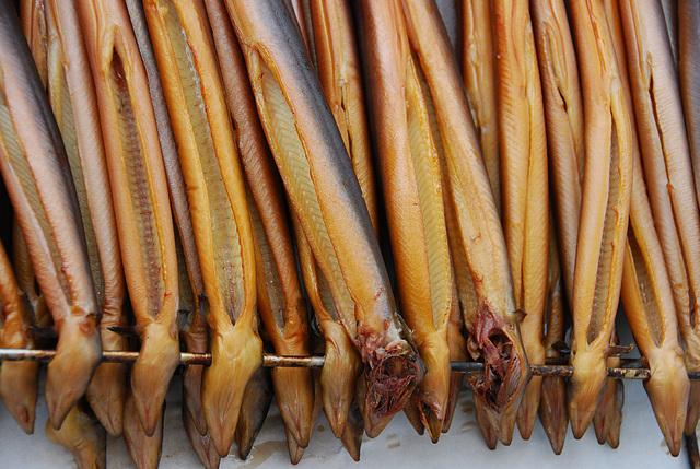 Industrie motorendag 2008: Smoked eels