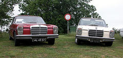 Two Mercedes-Benz 250