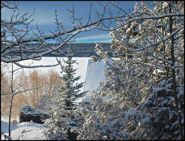 Feb 19, 2014 - No. 50 - One photo each day, -11 C