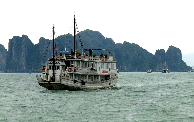 Another Tourist Boat