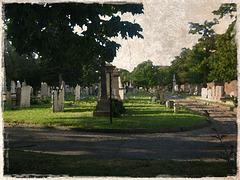Disused Graveyard