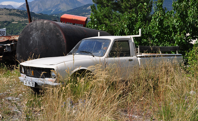 Holiday 2009 – Old Peugeot 504 truck