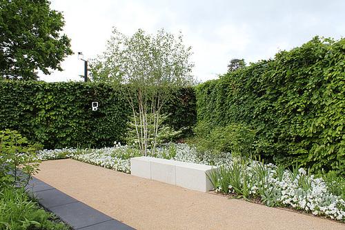 C-Jardin 3-Renaissance 2