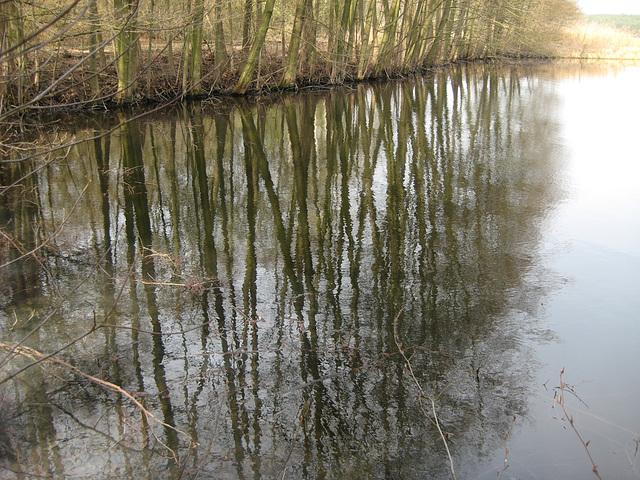 Gewässer bei Saalow - Spieglungen