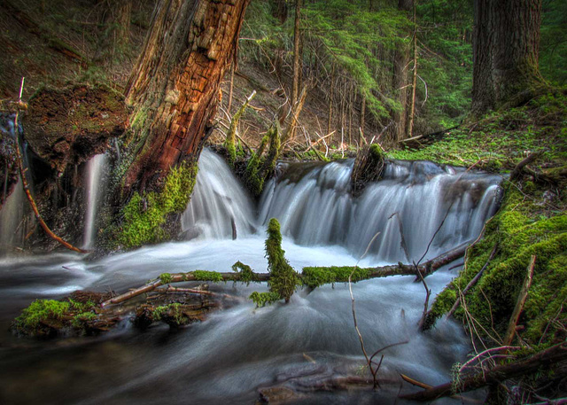 Waterfall Curtain