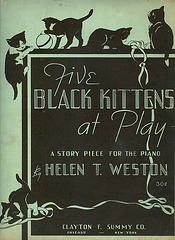5 black cats at play