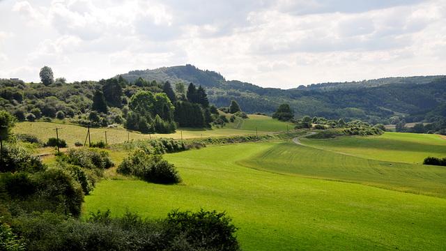 View of the Eifel, Germany