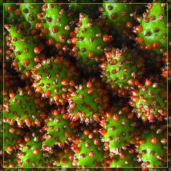 Alien Berries Abstract