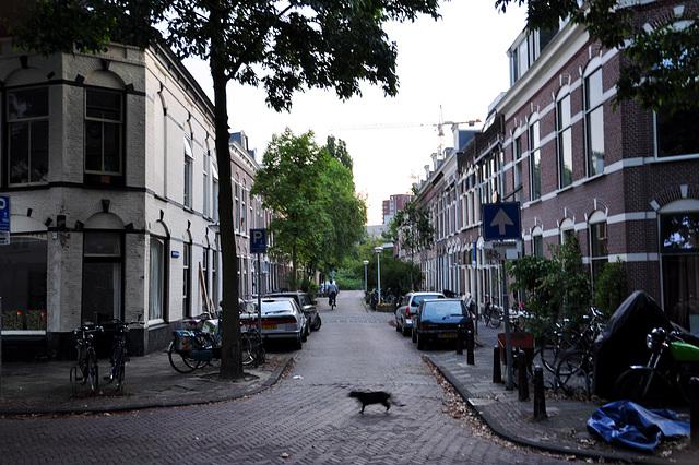 Schutterstraat (Militiaman Street) in Leiden