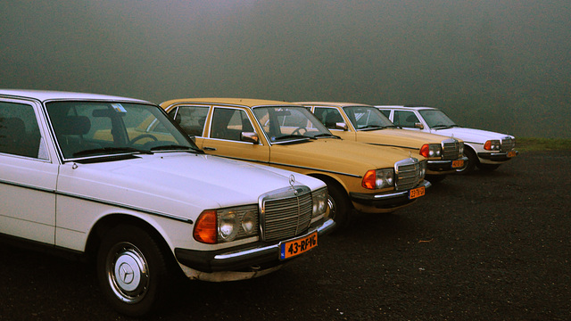 Mercedes-Benzes in the mist