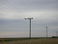 Verendrye Electric - Ward County, ND