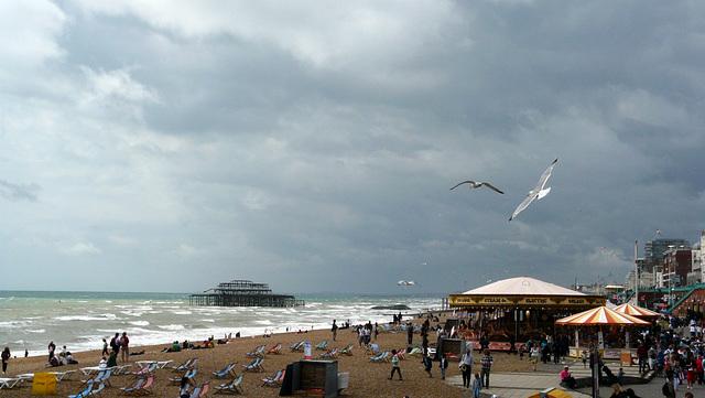 World Wide Photo Walk 09 -Brighton 22