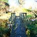 Bridge over Arowhenua stream