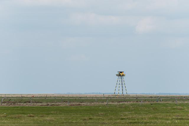 Turm - 20130515