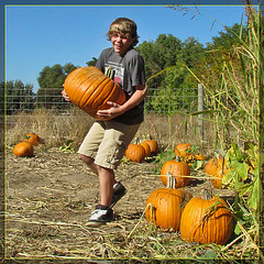 Monster Pumpkin Boy