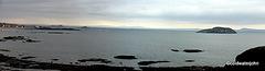 Berwick seascape