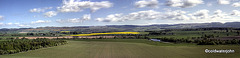 Forth Valley pan