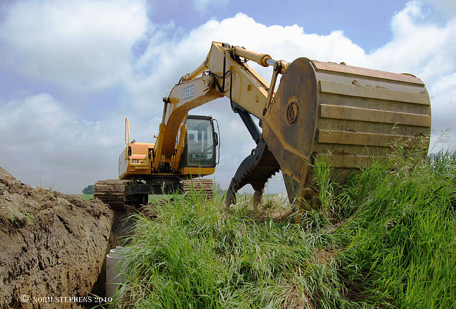 Give Me a Home where the Diggers Roam