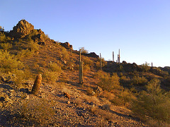 On Picacho peak, waiting for sunset