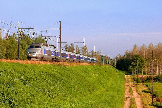 TGV automnal