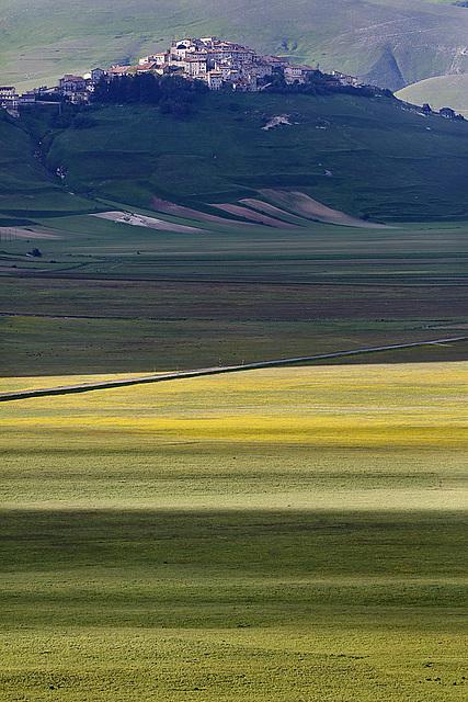 In giugno e' giallo.