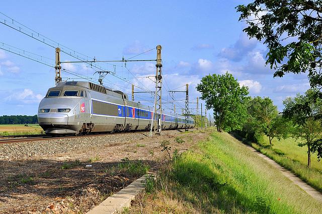 TGV sur la PLM