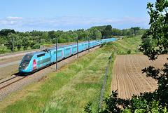 TGV low-cost haute densité