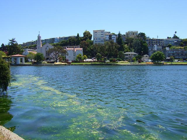 Oakland Lake ~ Lake Merritt