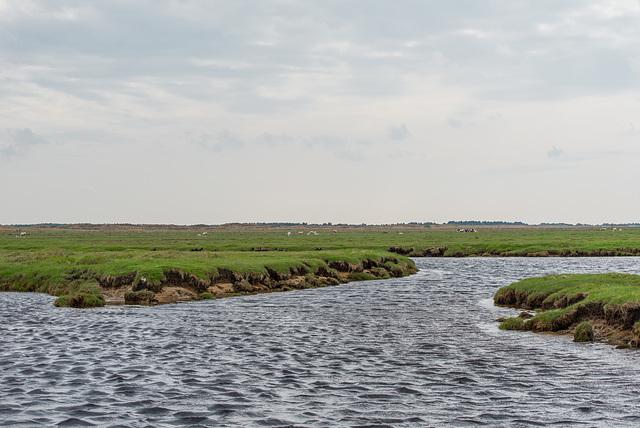 Wasserwege - 20130515