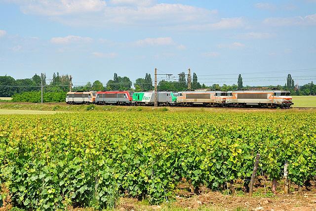 Train de machines dans les vignobles