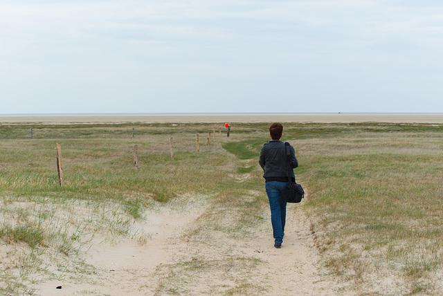 Zum Meer - 20130515