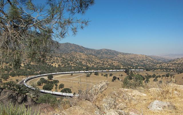 Tehachapi loop (3301)