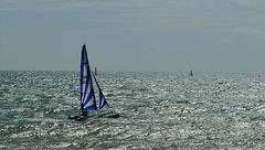 Sailing Through Summer