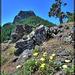 Pilot Rock with Boulders