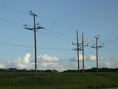 Central Power Electric - Pierce County, ND