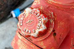 Hydrant from Liège in Antwerp