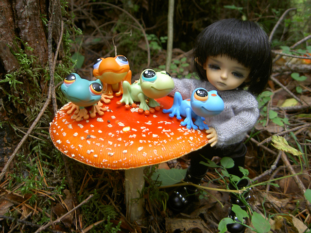Fomalhaut, toads and toadstools