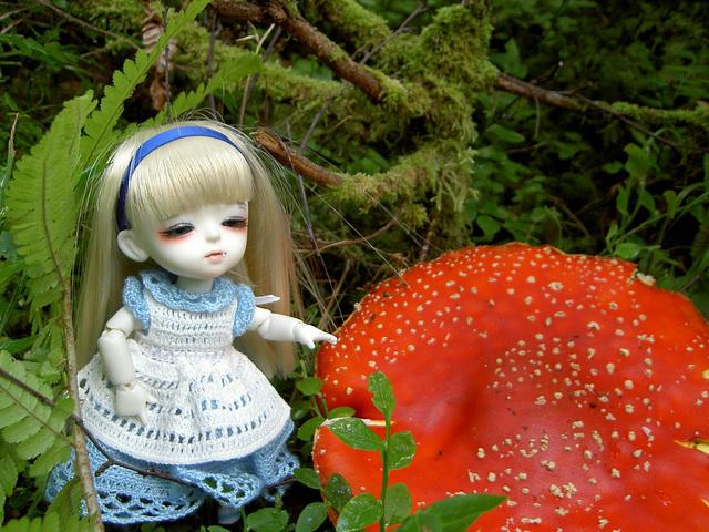 Lumi-Alice in Wonderland