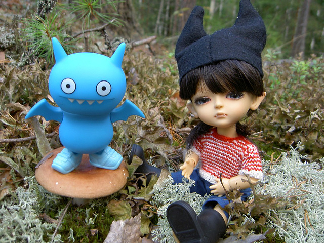 Batty boys in the fall forest