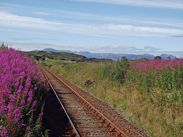 Duirinish station in full bloom