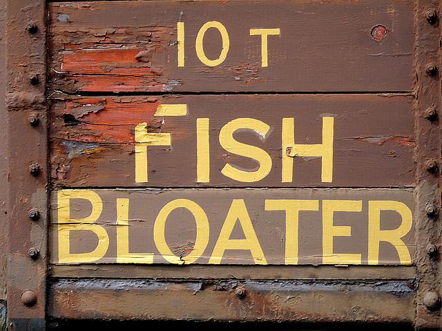 10 Ton Fish Bloater