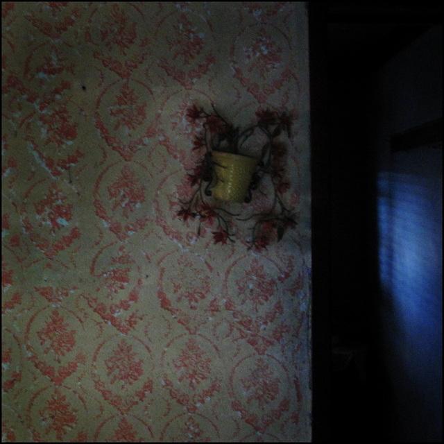 casa rosa #2