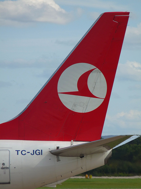 Turkish Boeing 737-8F2 Fin (TC-JGI)