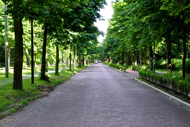Scheveningseweg (Scheveningen Road)