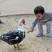 Boy Feeding Duck