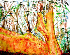 Portrait of the model as logs in a  glade