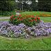 Conservatory of Flowers: Garden