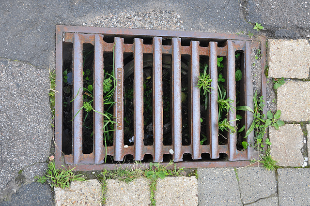 Vogelsang IP – drain cover with a prescribed direction of the water flow