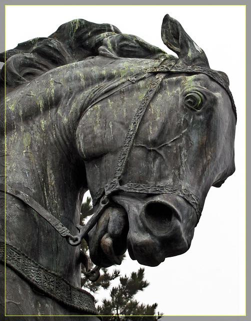 "Headstudy of ""El Cid"" Bronze Statue"
