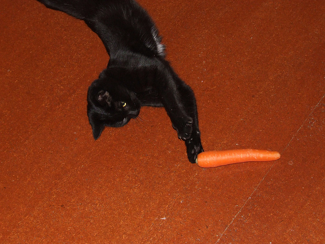 The new way to peel a carrot